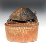 Armadillo Box