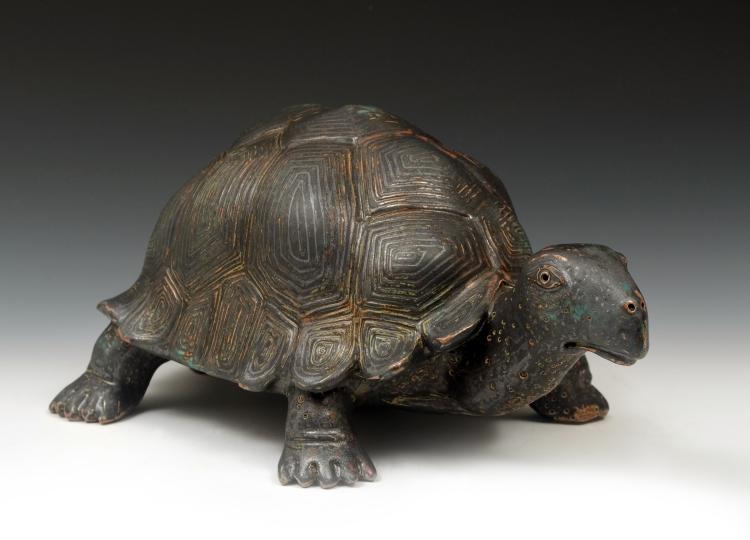 turtle_1